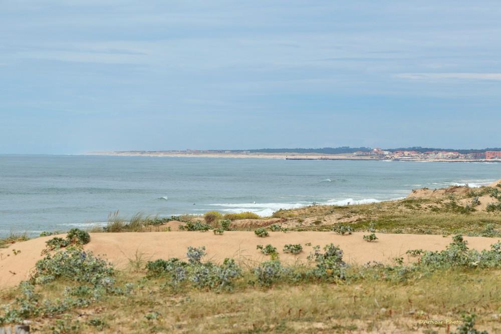 Depuis les dunes de Labenne 1506-2