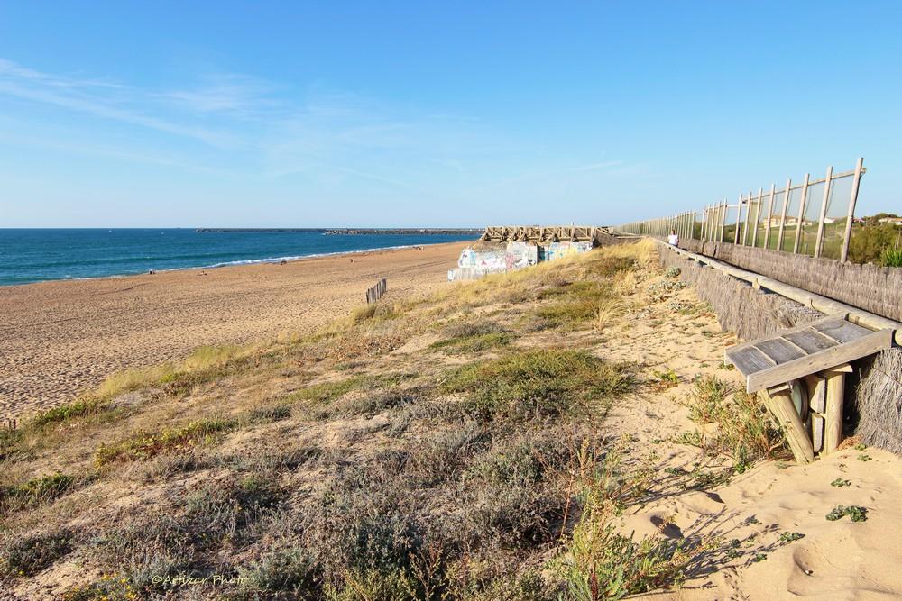 Dunes – plages et océan Tokina 0809-1